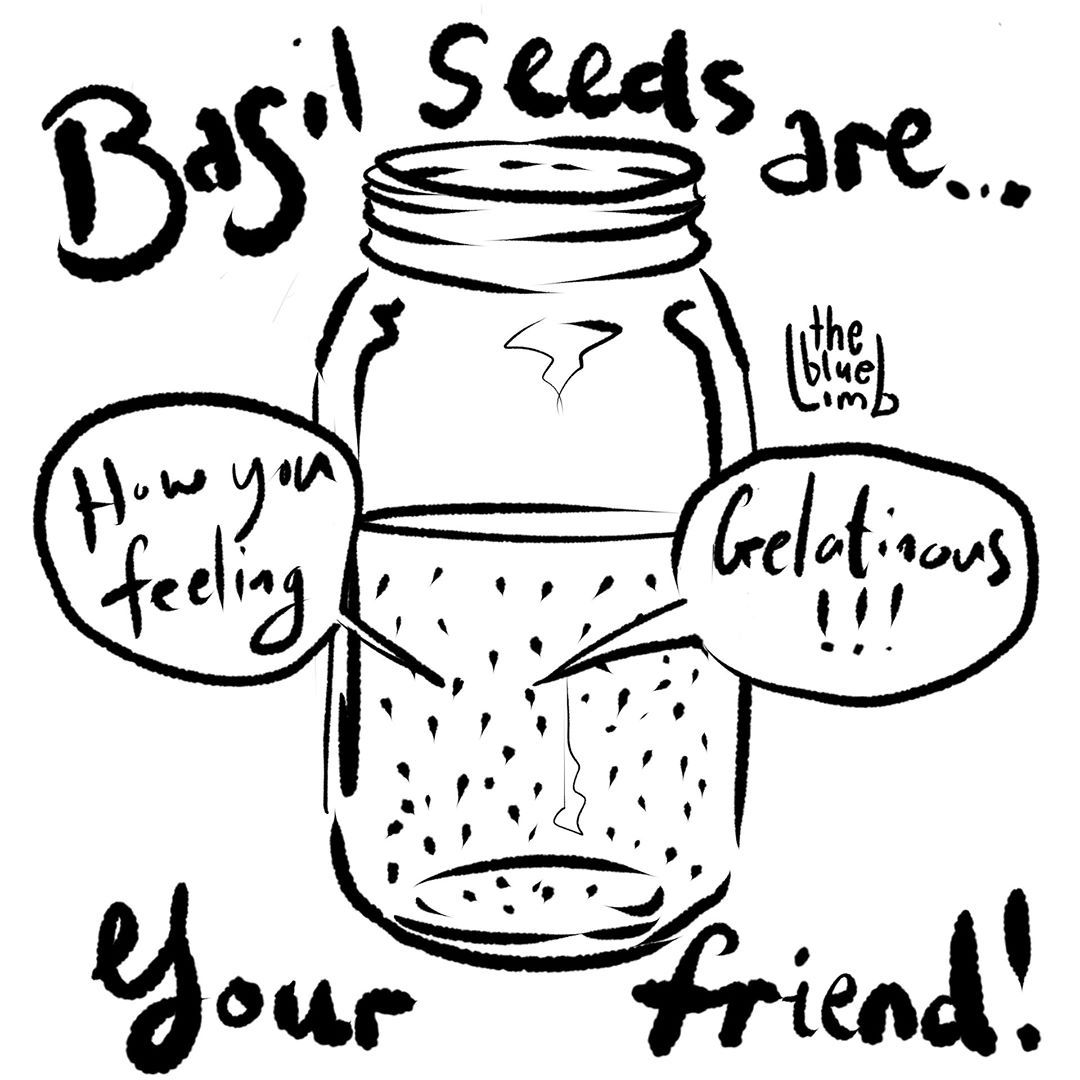 I bought basil seeds from https://www.aotearoad.com/ for