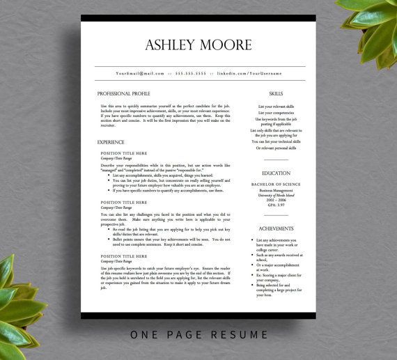 Professional Resume Template For Word  Pages Resume Cover