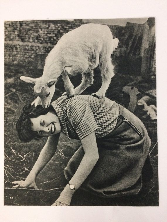 Vintage art print from book about pets quirky retro woman smiling little lamb cute animal black and white decor
