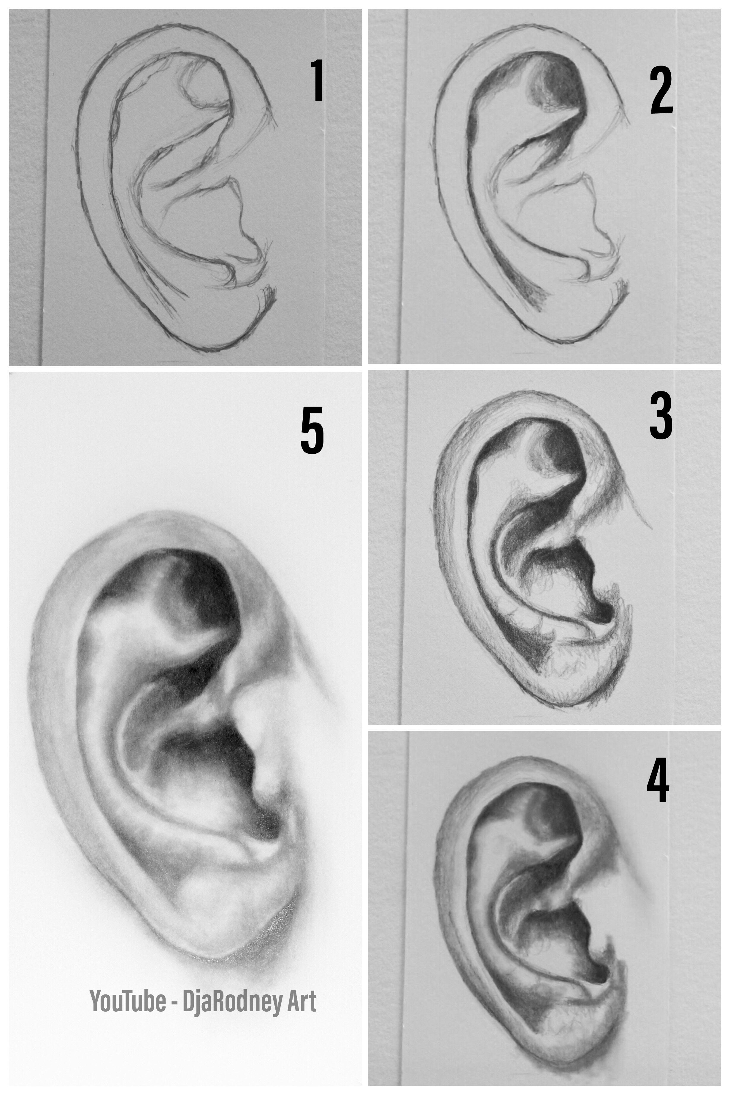 How To Draw Ears Step By Step Youtube How To Draw Ears Drawing Techniques Youtube Drawing