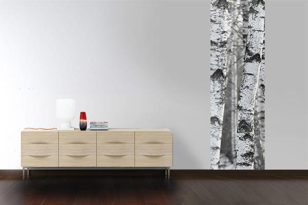 Papier peint murale Arbre blanc   IDEES DECOR   Pinterest   Arbres ...