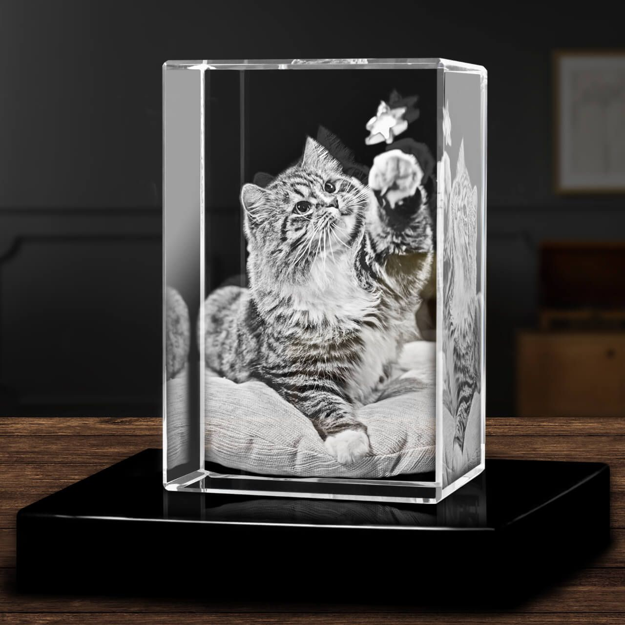 Crystal 3d Rectangle Picture In Glass Block Artpix 3d In 2020 3d Photo Crystals 3d Rectangle 3d Laser Gifts