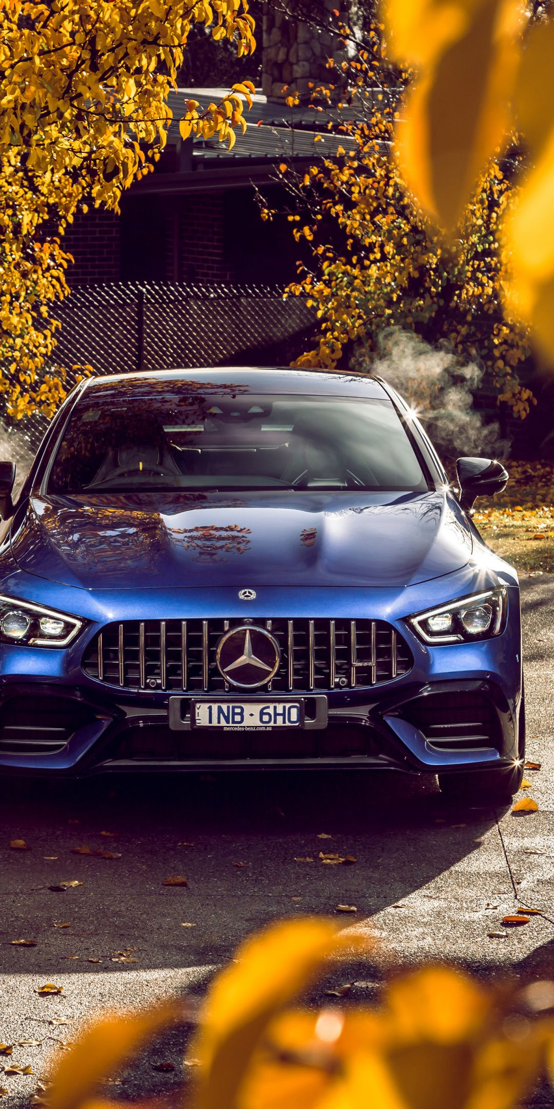 1080x2160 Mercedes Amg Gt 63 S 4matic Coupe Blue 2019 Wallpaper