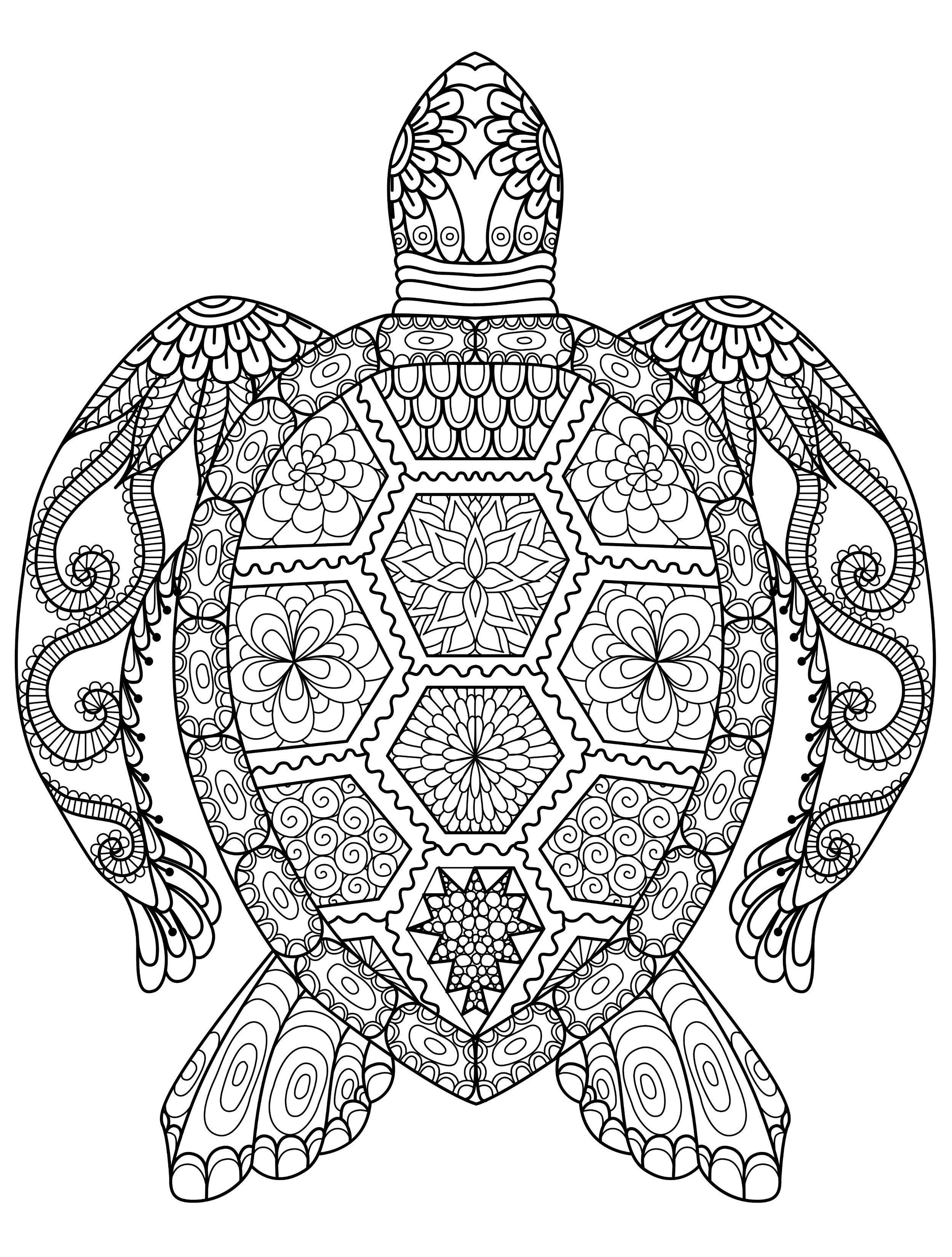 Animal Mandala Coloring Pages | Turtle coloring pages ...Detailed Mandala Coloring Pages For Adults