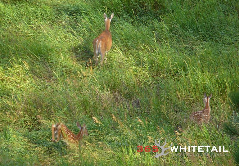 Prevailing Winds Why 'Hunting The Wind' Begins Today http