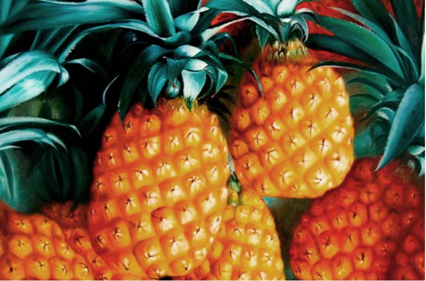 Identidad visual corporativa de 'Somos Piña'