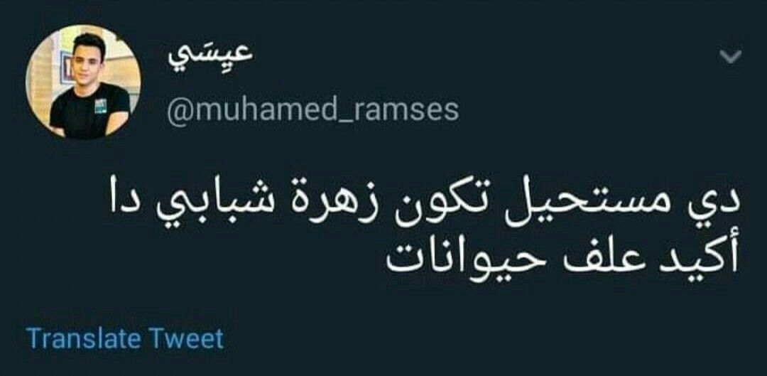 Pin By Nes Ma On ضحك نكشه نكت Jokes Quotes Funny Arabic Quotes Fun Quotes Funny