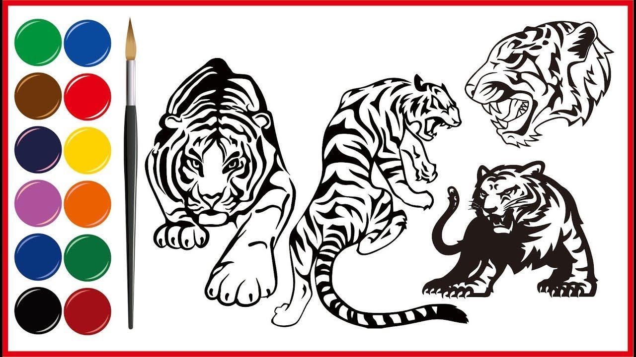 Cara Menggambar Binatang Macan Dengan Gambar Cara Menggambar