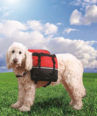 Red Dog Backpack by Etna Products #zulilyfinds