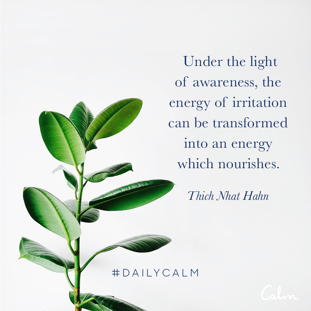 Under the light of awareness, the energy of irritation can be transformed into an energy which nourishes. —Thich Nhat Hahn
