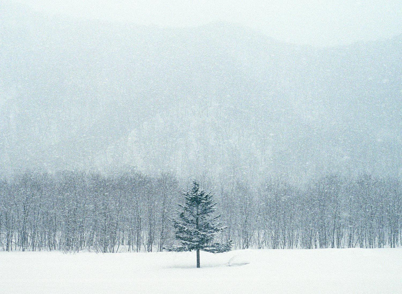 Hokkaido | cereal magazine