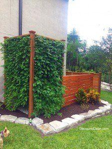 rainwater harvesting system, container gardening, gardening, go green, raised garden beds