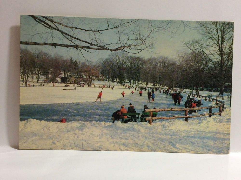 Ice Skating Downing Park Newburgh Ny Winter Rink Vintage Postcard 1960s Unposted Newburgh Ny Newburgh Postcard