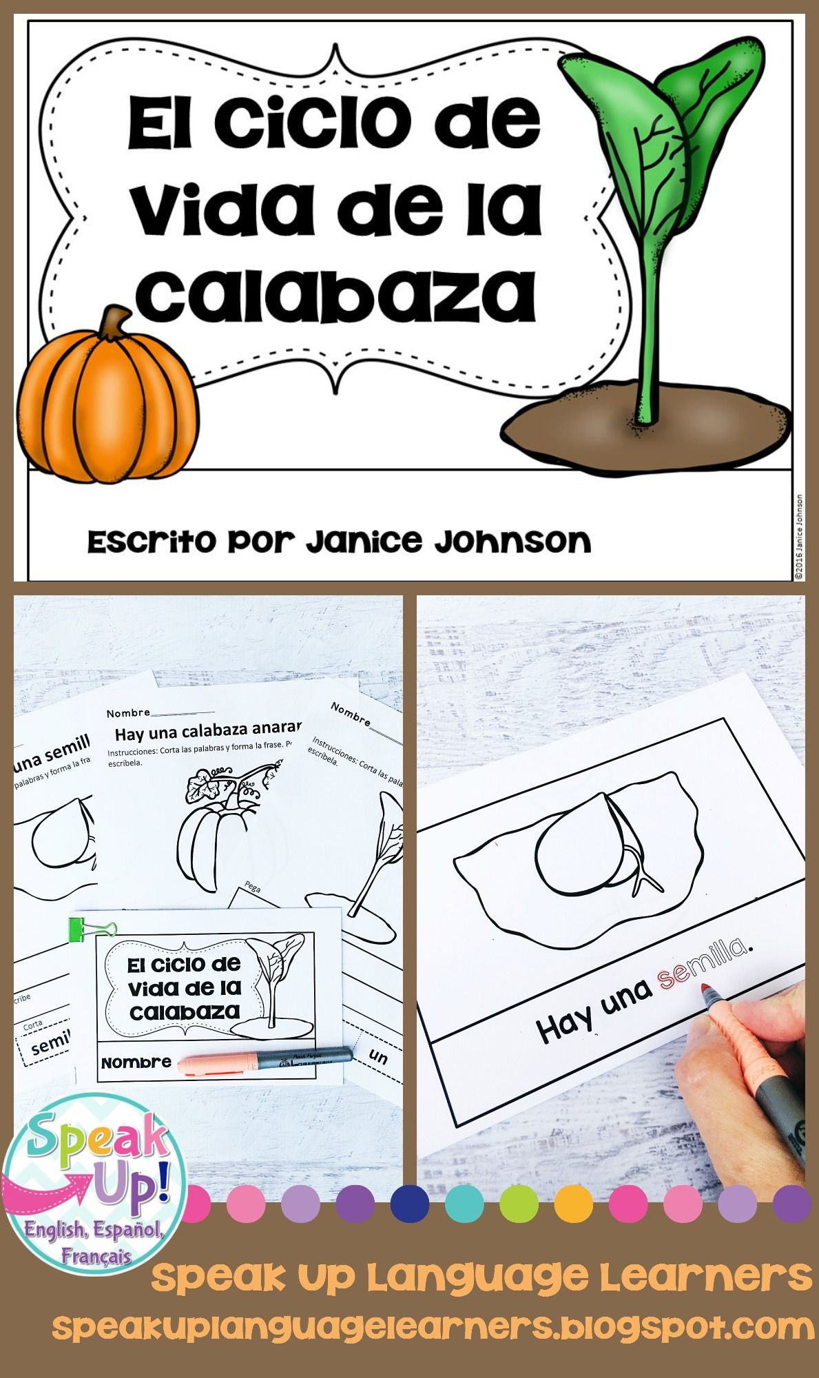 El Ciclo De Vida De La Calabaza Spanish Pumpkin Lifecycle