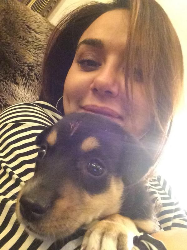 Image result for preity zinta dog