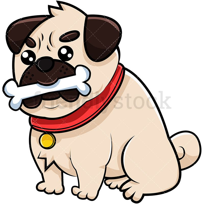 Pug Dog With Bone In Its Mouth Cute Pugs Pugs Dogs
