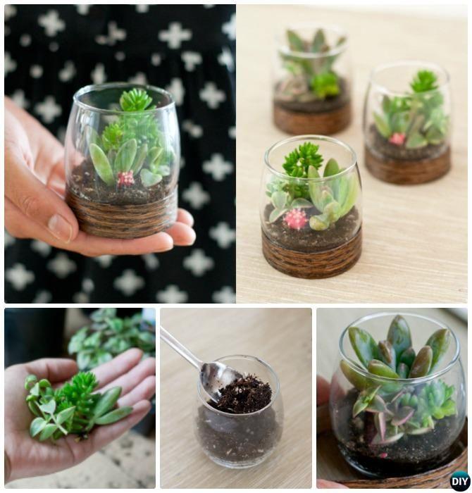 Beauteous Shot Glass Terrarium-DIY Mini Fairy Terrarium Garden Ideas
