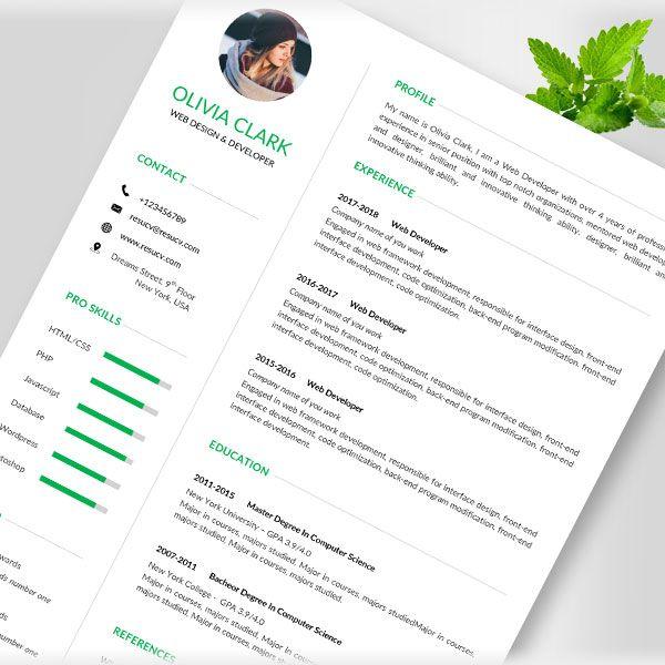 Environmental Professional Resume Accountant Resume