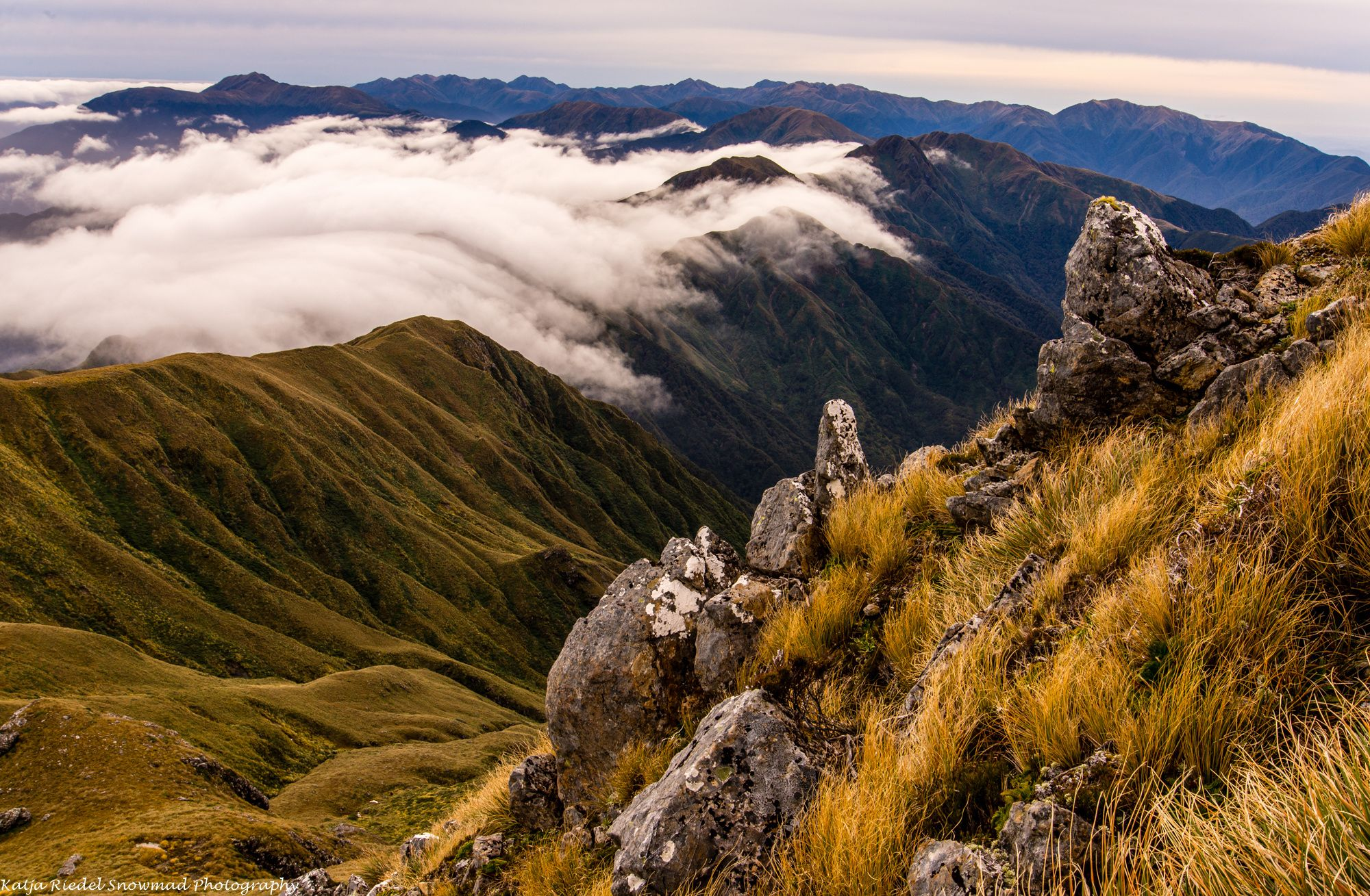 Mt Hector, Tararuas, New Zealand by Katja Riedel on 500px | tramping