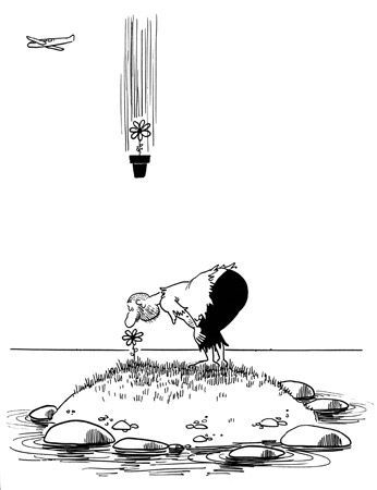 dessins de lassalvy