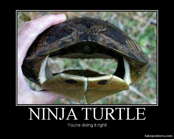 Ninja Turtle    You're doing it right!
