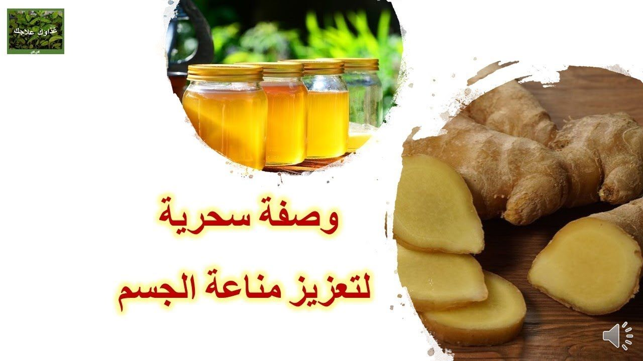مورينجا اوليفيرا Health Fitness Health Cooking Recipes