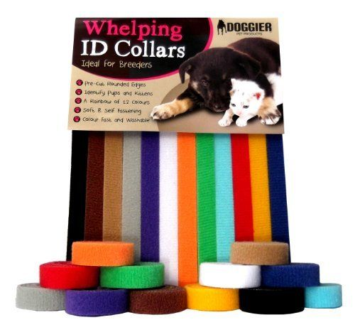 Whelping ID Collars Bands Puppy Dog Kitten 12 Colours Soft Adjustable Reusable (Standard) : Length - 35cm x 1cm Width) by Doggier, http://www.amazon.co.uk/dp/B00E9BXMTW/ref=cm_sw_r_pi_dp_EbNksb1DPRJ4H