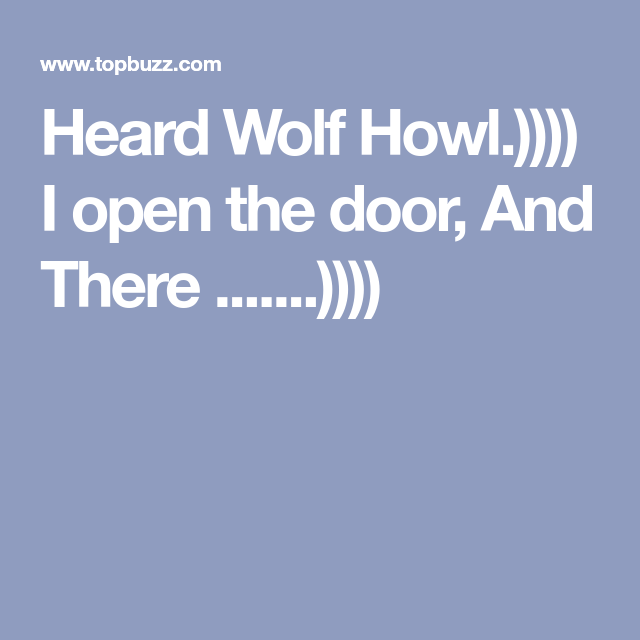 Heard Wolf Howl I Open The Door And There Wolf Howling Funny Gif Wolf