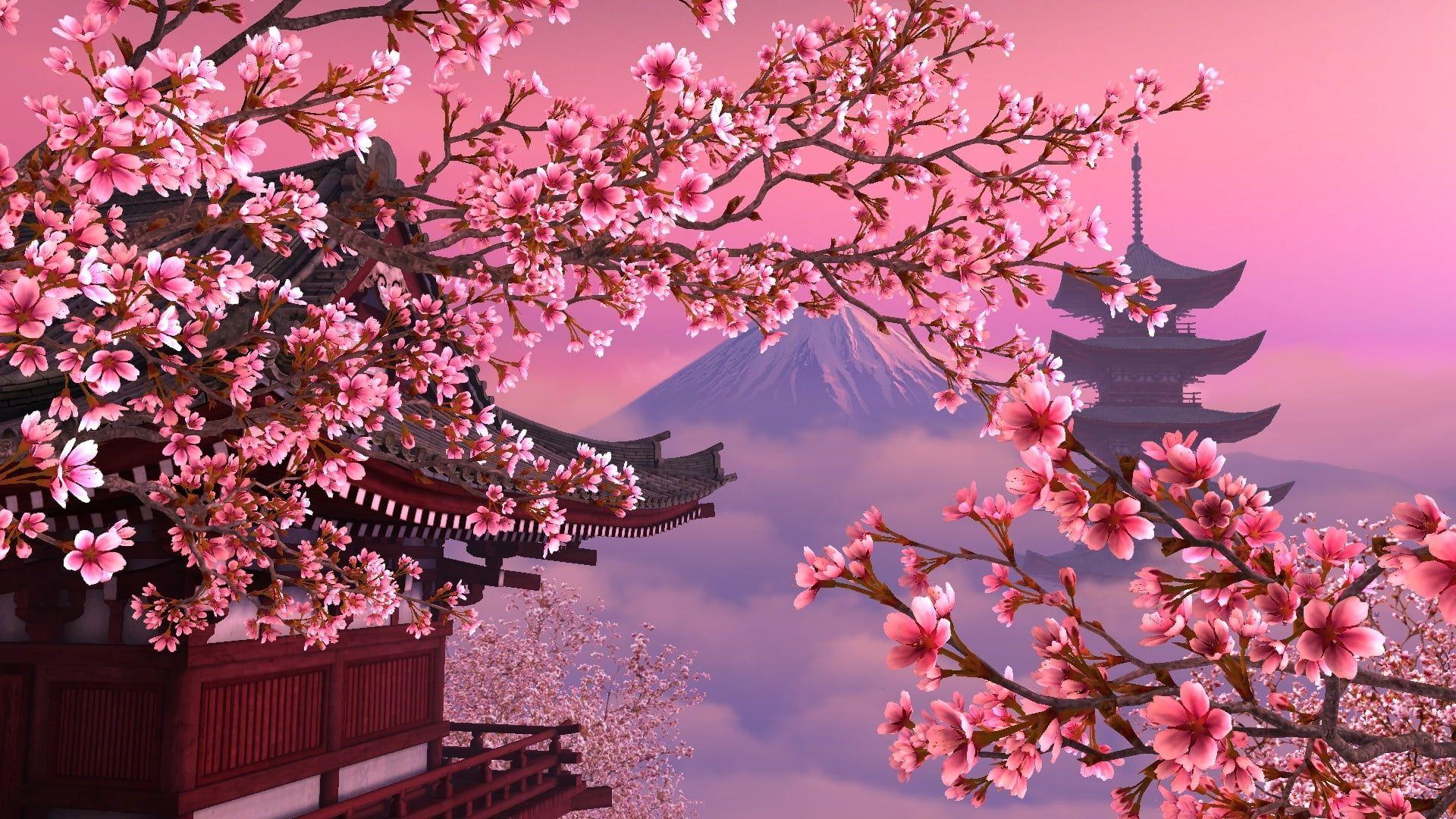 Mount Fuji Japan Animated Wallpaper Japan Sakura Pink Beautiful 1080p Wallpaper Hdwallpape Cherry Blossom Wallpaper Landscape Wallpaper Japan Landscape