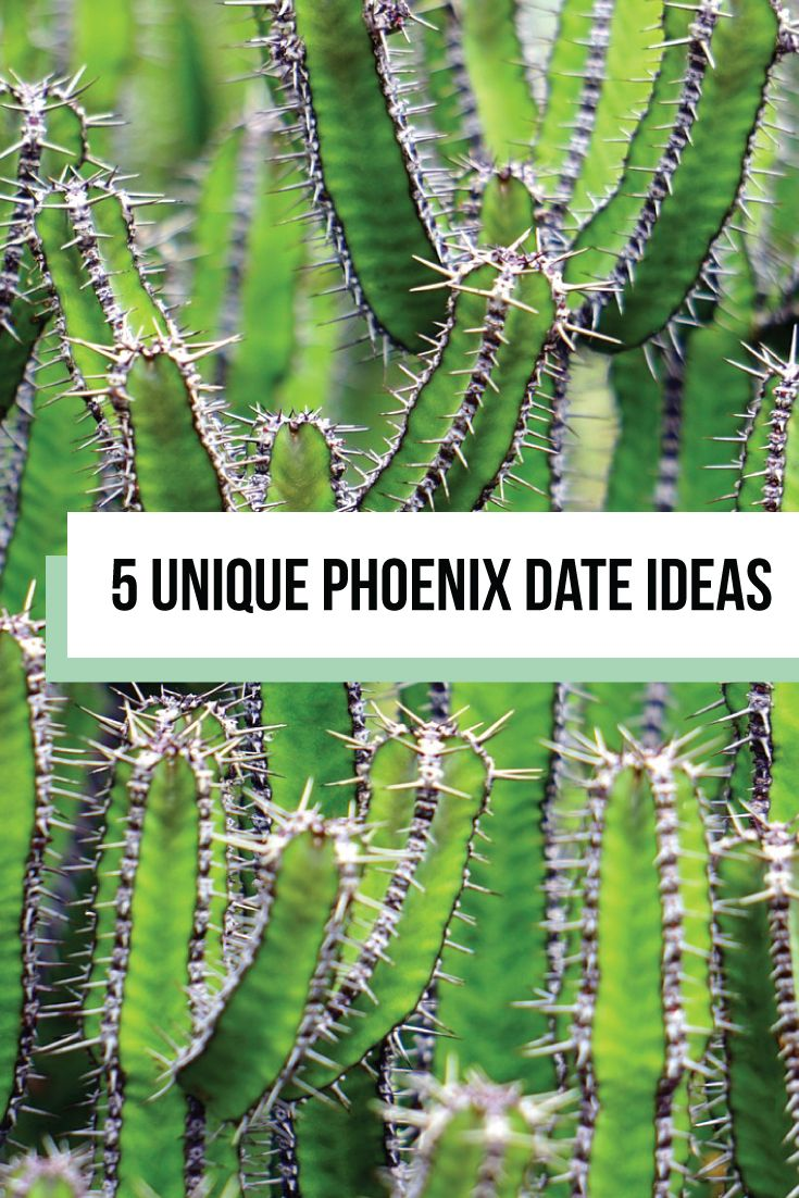 5 unique date ideas for when you're travelling to phoenix | florals