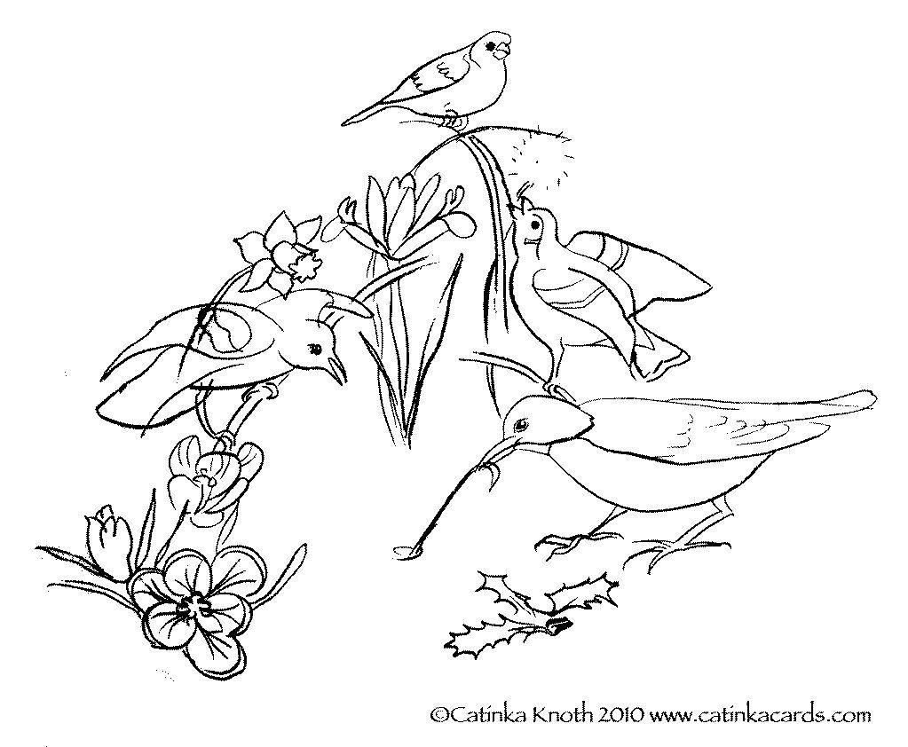 Spring Birds Flowers Coloring Page Printable Pdf Wall Art Etsy Coloring Pages Flower Coloring Pages Spring Birds