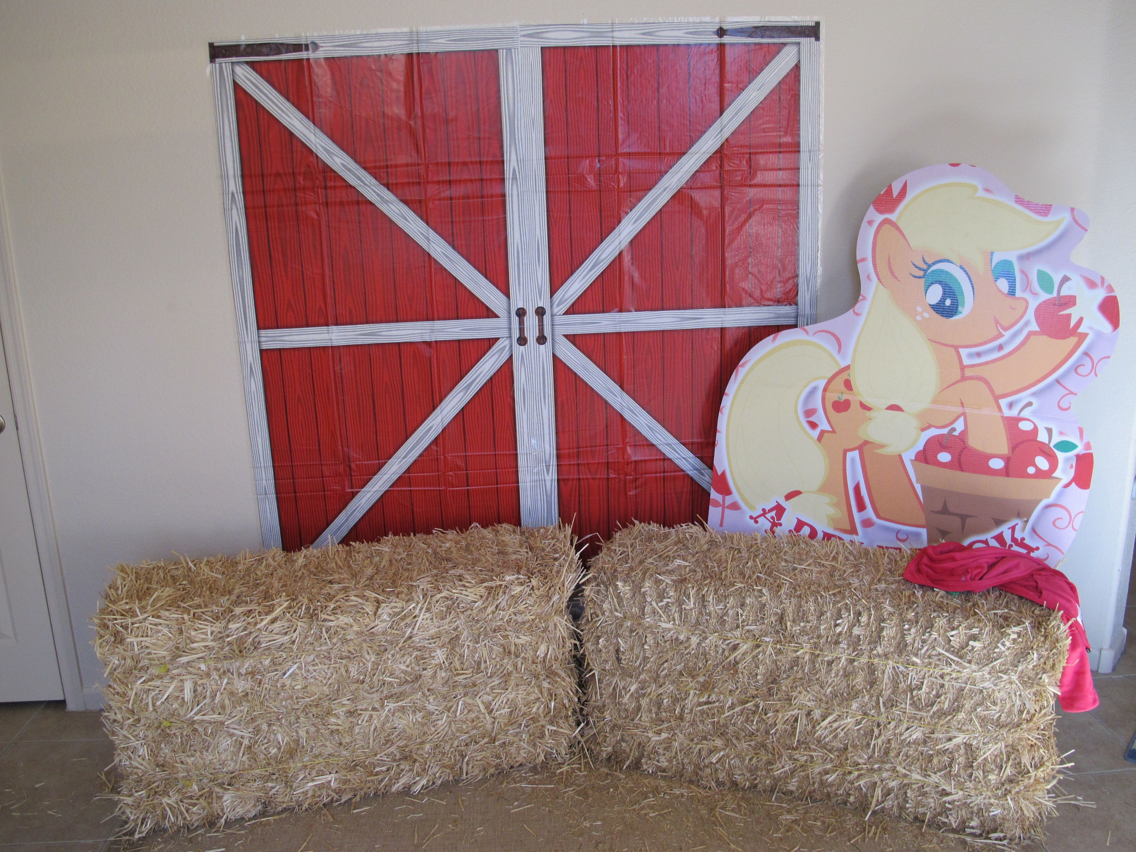 Perfect spot for party pics! Barn door scene setters from ...