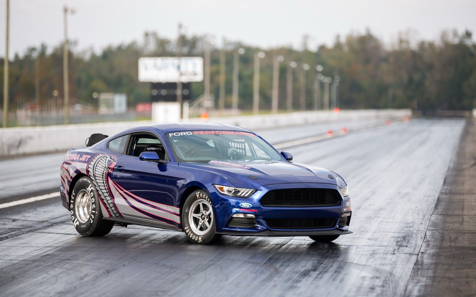 Ford S 8 Sec 1 4 Mile 2016 Cobra Jet Mustang Could Be Yours For 100k W Video Mustang Cobra New Ford Mustang Mustang Cobra Jet