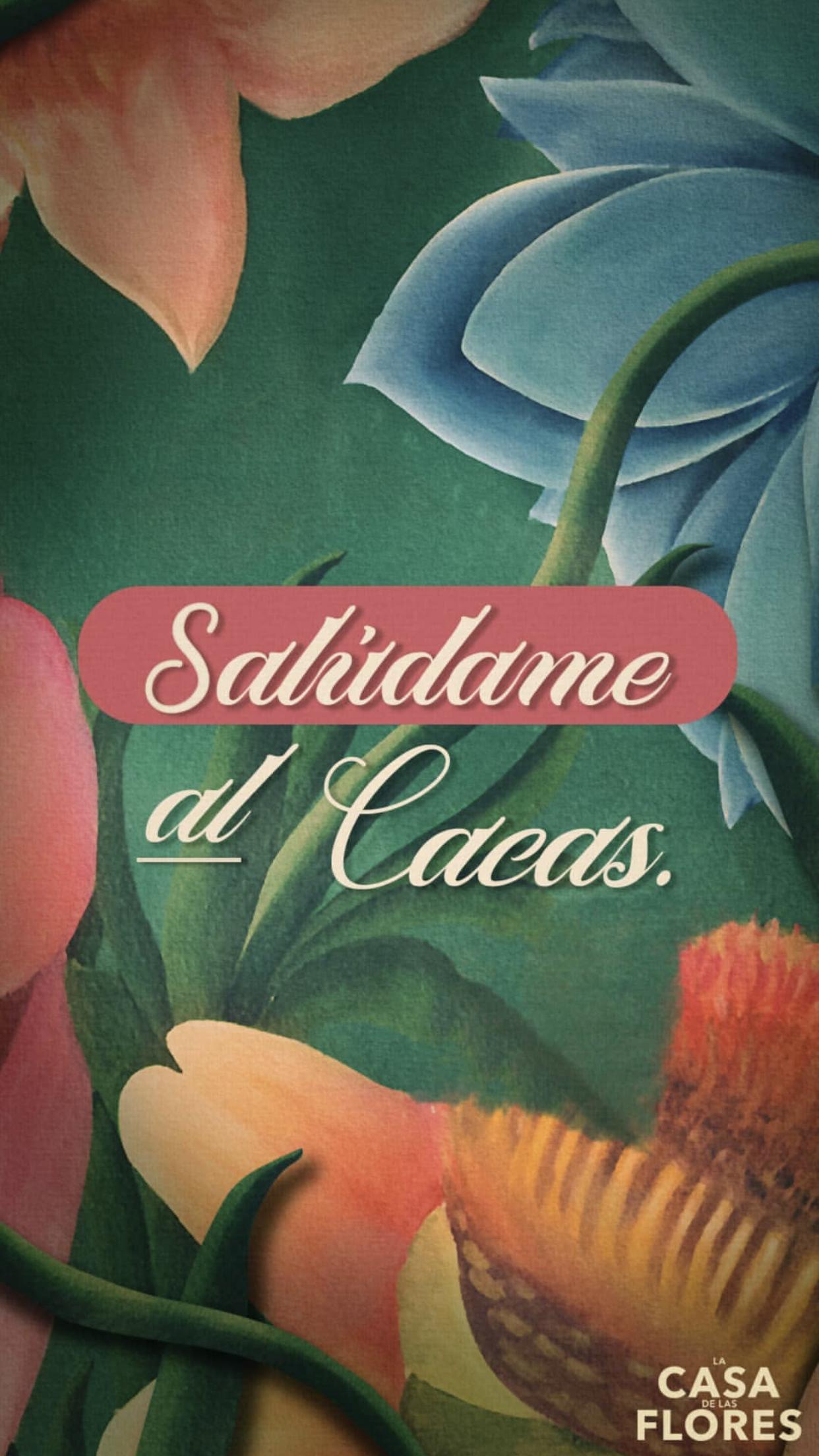 Pin De Sofia Martinez En La Casa De Las Flores En 2019 Netflix
