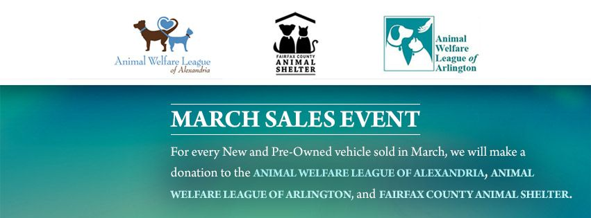This Month We Are Supporting Local Animal Shelters Animal Shelter Shelter Support Local