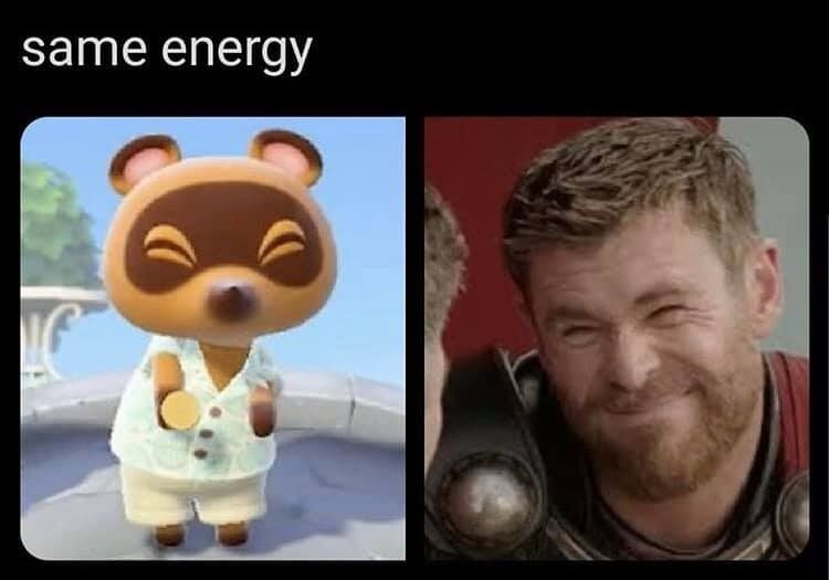 Animal Crossing New Horizons Meme In 2020 Animal Crossing