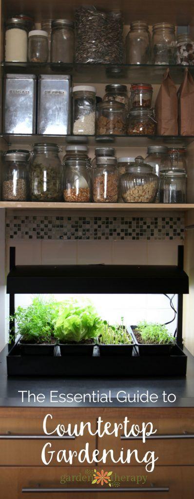 Countertop Gardening For Every Kitchen Indoor Vegetable 400 x 300