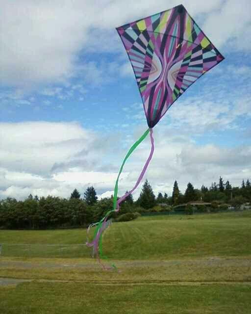 Go fly a kite :)