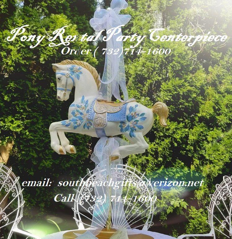 Blue Pony Rental Pastel Baby Shower Boys Birthday Party