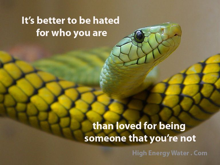 Its Better To Be Hated For Who You Are Than Loved For Being