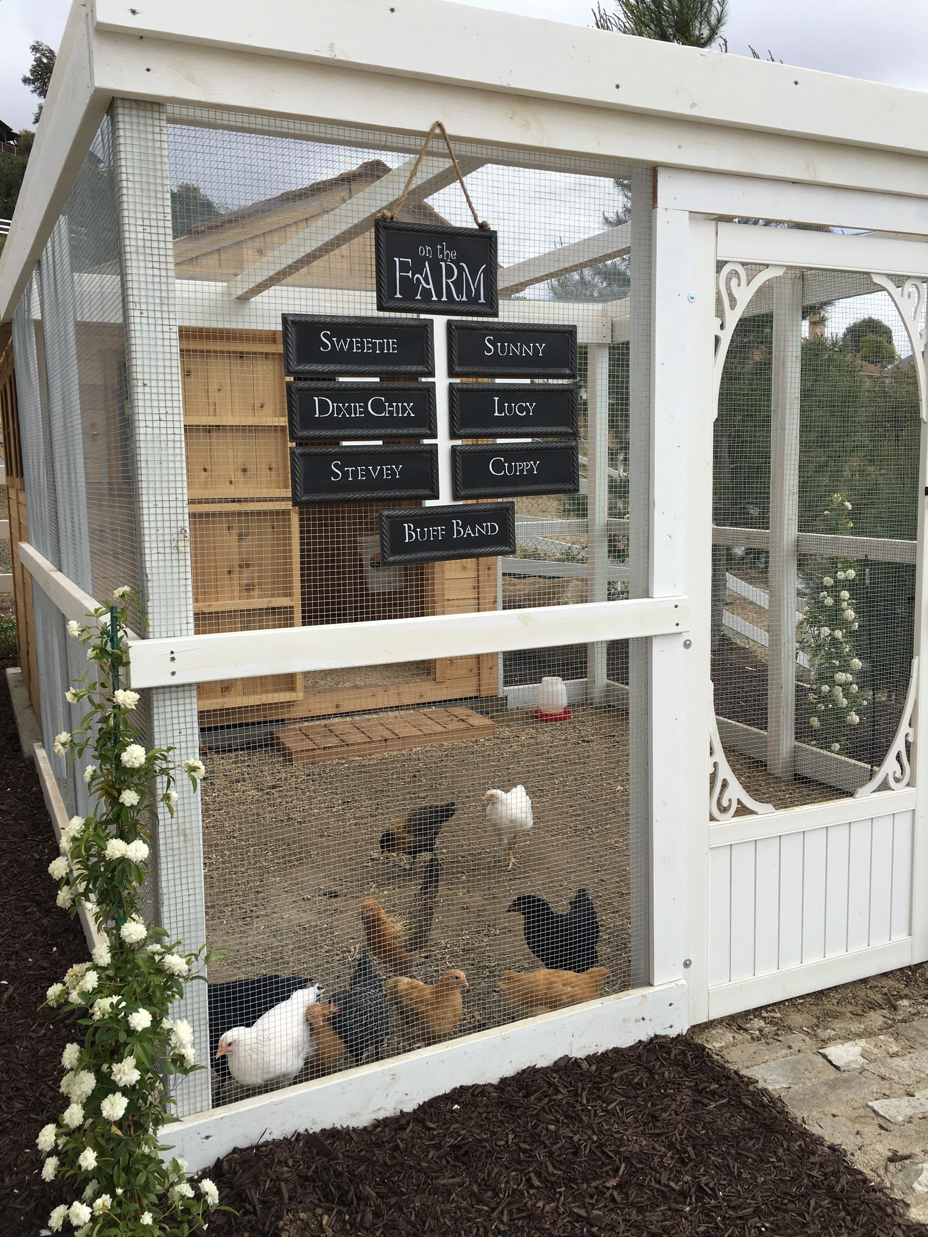 Chicken Coop - Outside Cat House maybe. Chicken Coop - More ideas ...