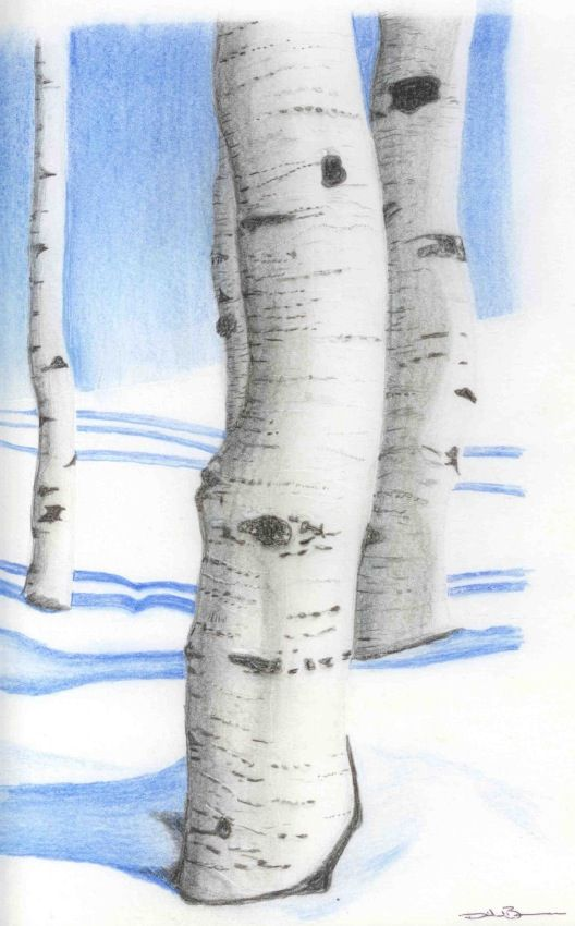Colored pencil by David Burman -Inspired to draw some day! :0)
