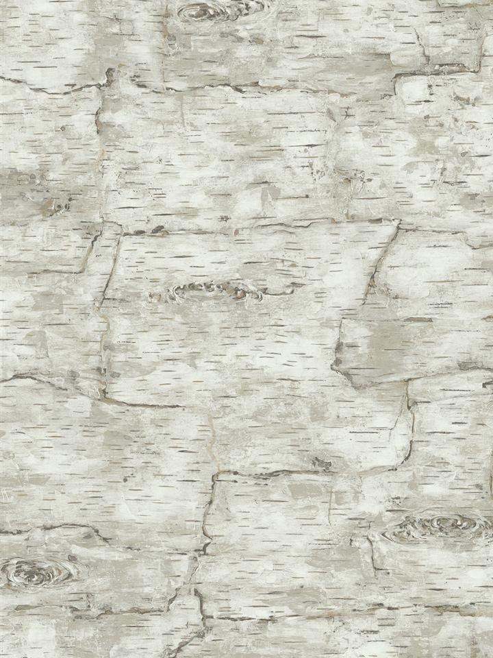 Birch tree wallpaper potential powder room idea (With