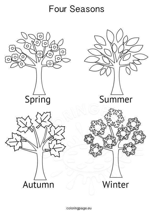 seasons activities four seasons tree coloring page  Tree coloring