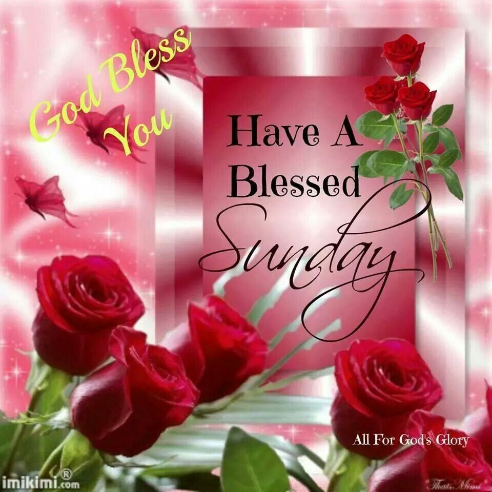 Have a blessed Sunday... | Days of the Week | Pinterest