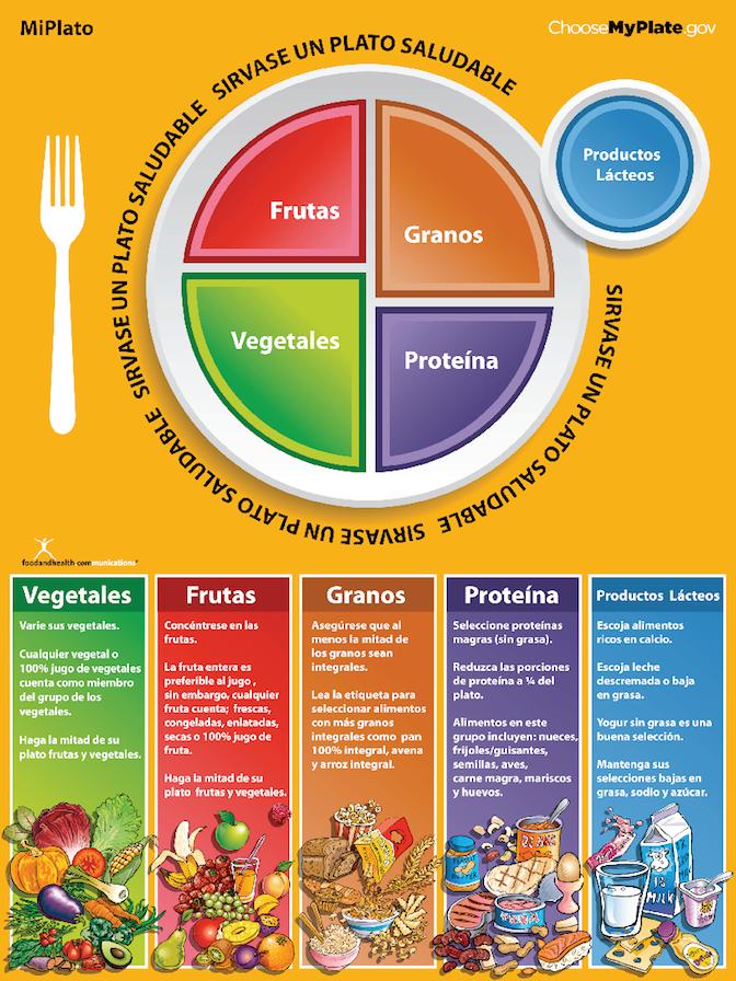 For Adults Alimentación saludable para niños, Plato del