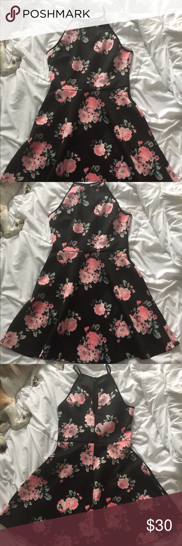 Halter Black Dress With Pink Flowers Black Halter Dress Black Dress Dresses [ 1740 x 580 Pixel ]