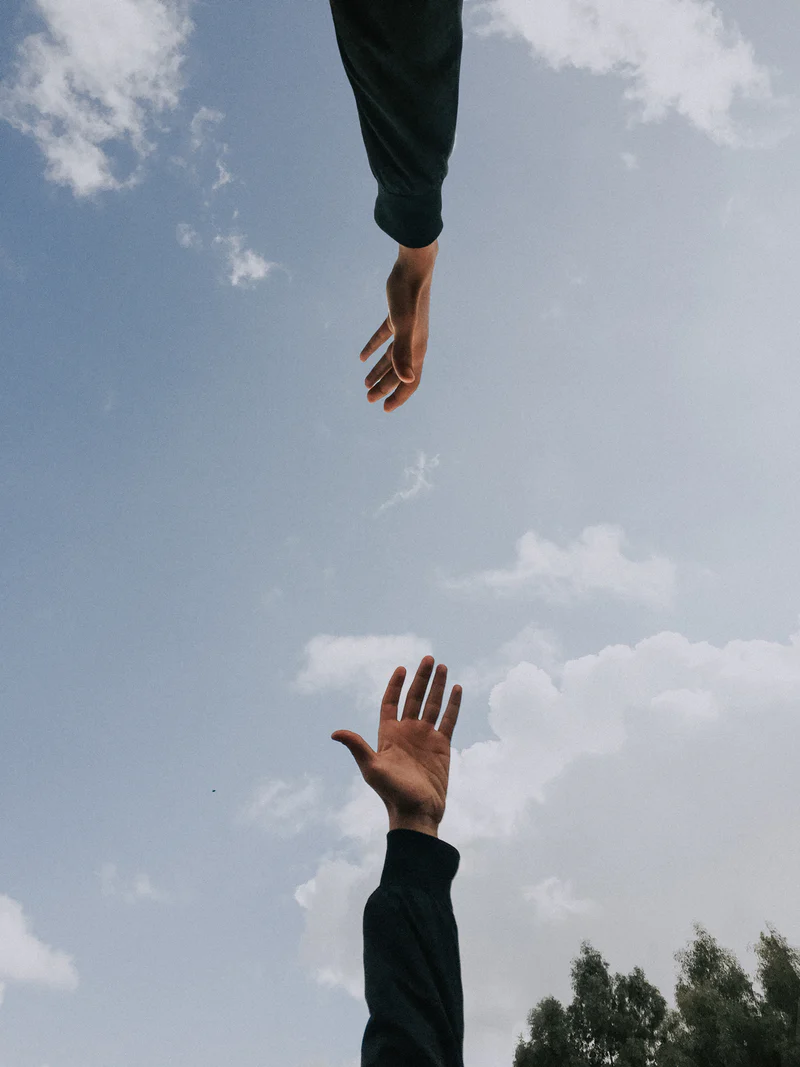 20 Hands Pictures Download Free Images On Unsplash Hand Pictures Hand Photography Photo