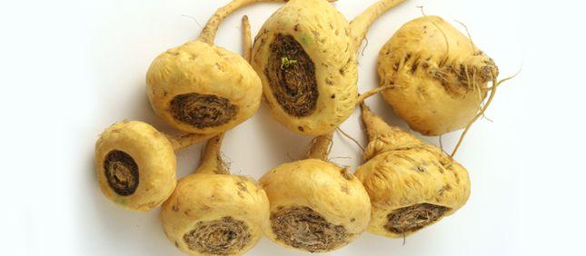 Have You Tried Maca Coconut Health Benefits Maca Health