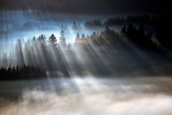 Il perdono offre tutto ciò che voglio. Oggi ho accettato questo come vero. Oggi ho ricevuto i doni di Dio. (Lezione 122 UCIM)